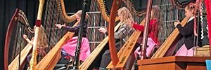 Instrumental Music students play harps during a musical performance.